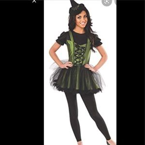 The Wizard Of Oz Wicked Witch of the West Costume